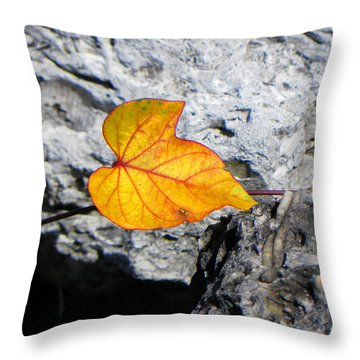 Throw Pillow featuring the photograph Floating On Stone by Rosalie Scanlon