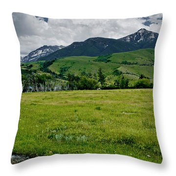 Flood Relief Throw Pillow by Roderick Bley