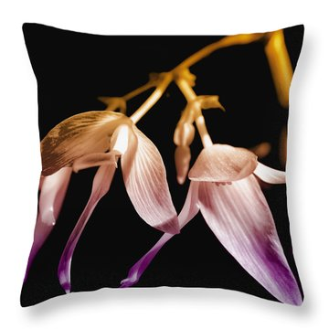 Floral Blend Throw Pillow by David Patterson