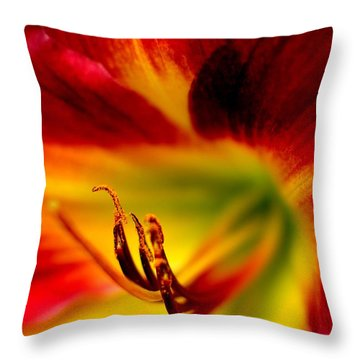 Floral Macro Of A Blossom Throw Pillow by Floyd Menezes