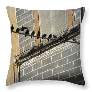 Florentine Pigeons Throw Pillow