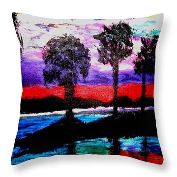 Florida At Sunset Throw Pillow