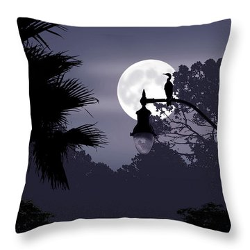Florida Moonlight Throw Pillow by Ginny Schmidt