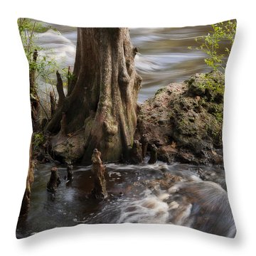 Florida Rapids Throw Pillow by Steven Sparks
