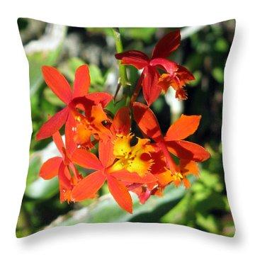 Florida Wild Iris Throw Pillow by Debi Singer