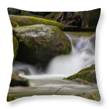 Throw Pillow featuring the photograph Flow by Cindy Haggerty