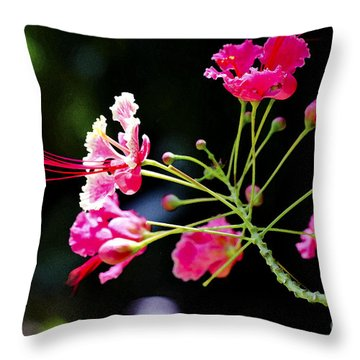 Flower Digital Painting Throw Pillow by Pravine Chester