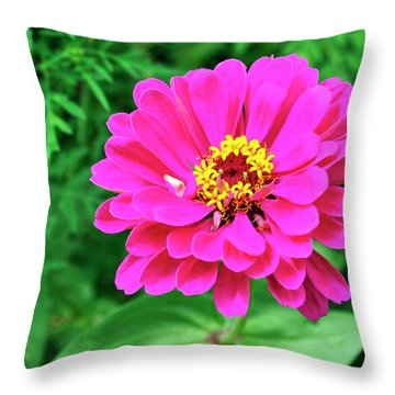 Flower Throw Pillow by Joanne Brown