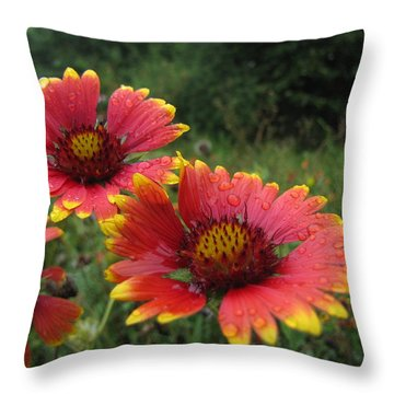 Throw Pillow featuring the photograph Flower by John Crothers