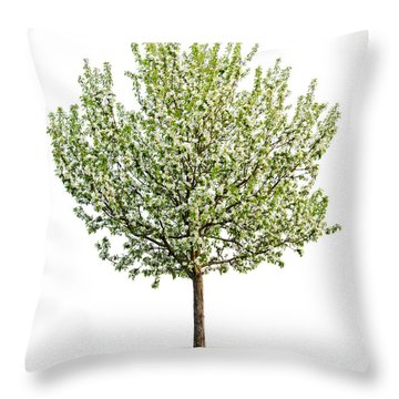 Flowering Apple Tree Throw Pillow