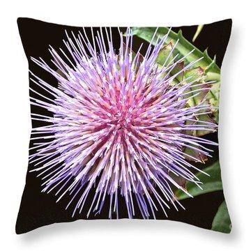Flowering Artichoke Top View Throw Pillow by Byron Varvarigos