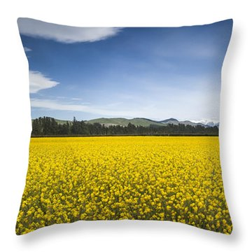 Flowering Mustard Crop In Canterbury Throw Pillow by Colin Monteath