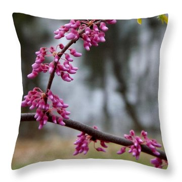 Throw Pillow featuring the photograph Flowering Tree 1 by Gerald Strine