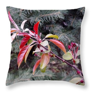 Flowering Tree 3 Throw Pillow by Gerald Strine