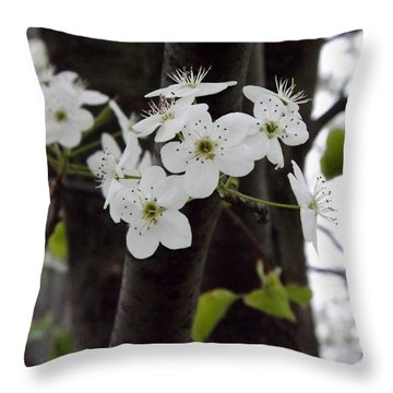 Flowering Tree 4 Throw Pillow by Gerald Strine