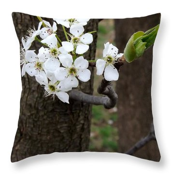 Floweringtree 2 Throw Pillow by Gerald Strine