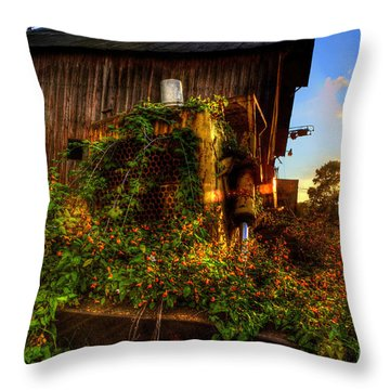 Flowers On Old Bulldozer Sunset Throw Pillow by Dan Friend