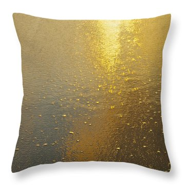 Flowing Gold 7646 Throw Pillow by Michael Peychich