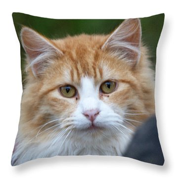 Fluffy Orange Throw Pillow by Chriss Pagani