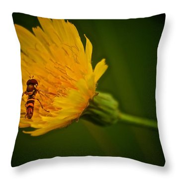 Fly On A Flower Throw Pillow