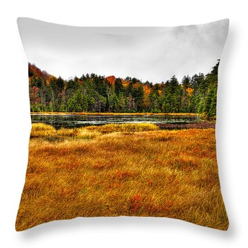 Fly Pond On Rondaxe Road Throw Pillow by David Patterson
