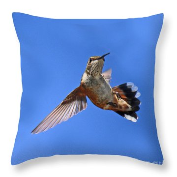 Flying Backwards - No Problem Throw Pillow