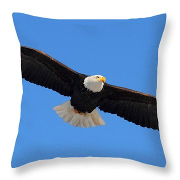 Flying Bald Eagle Throw Pillow
