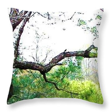 Throw Pillow featuring the photograph Flying Branch by Pamela Hyde Wilson