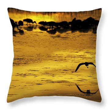 Flying Home - Florida Wetlands Wading Birds Scene Throw Pillow by Rob Travis