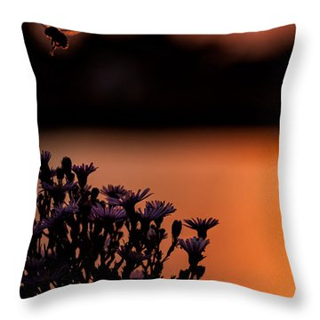 Throw Pillow featuring the photograph Flying Home by Tom Gort