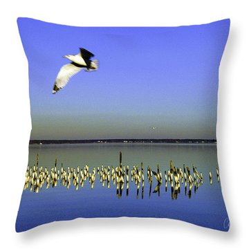 Throw Pillow featuring the photograph Flying Solo by Clayton Bruster