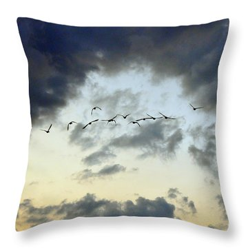 Flying South For The Winter Throw Pillow by Paul Ward