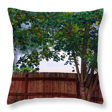 Throw Pillow featuring the photograph Fog In Olympia by Jeanette C Landstrom
