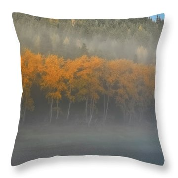 Throw Pillow featuring the photograph Foggy Autumn Morning by Albert Seger