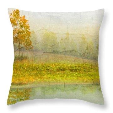 Foggy Meadow Throw Pillow by Debra and Dave Vanderlaan