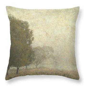 Foggy Morning. Trossachs National Park. Scotland Throw Pillow by Jenny Rainbow