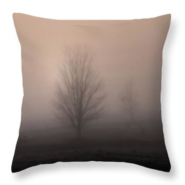 Throw Pillow featuring the photograph Foggy Pasture by Deborah Smith