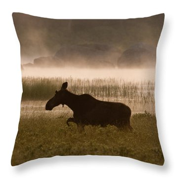 Foggy Stroll Throw Pillow