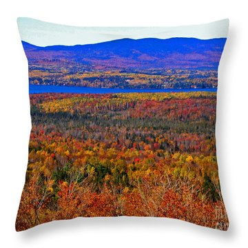 Foliage From Height Of Land Throw Pillow
