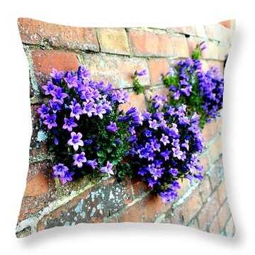 Follow The Flower Brick Wall Throw Pillow by Rene Triay Photography