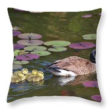 Throw Pillow featuring the photograph Follow The Goose by Mary Zeman