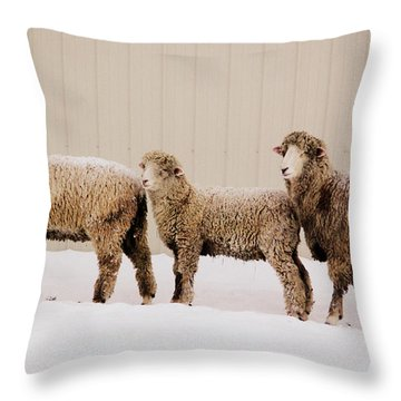 Follow The Leader Throw Pillow by Linda Mishler