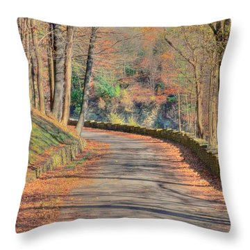 Follow The Path Throw Pillow by Kathleen Struckle