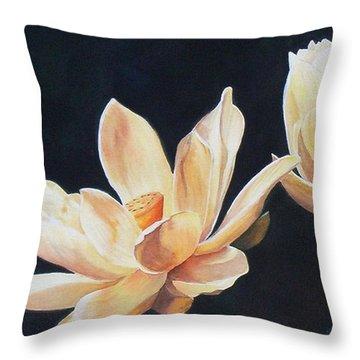 Follow The Sun  Sold  Print Available Throw Pillow