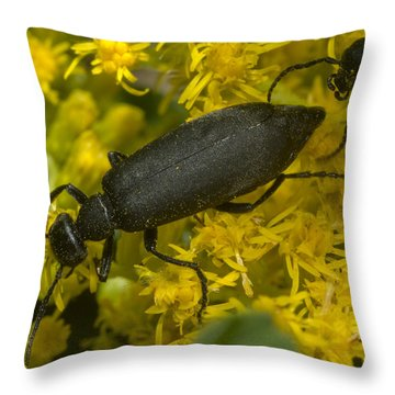 Following Throw Pillow by Jack Zulli