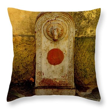 Fontaine D'eau Throw Pillow by Lainie Wrightson