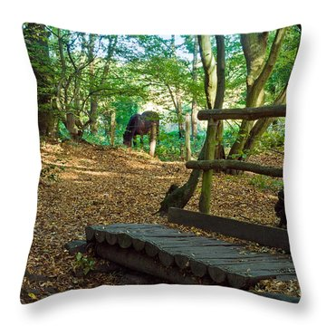Footbridge To....... Throw Pillow by Trevor Chriss