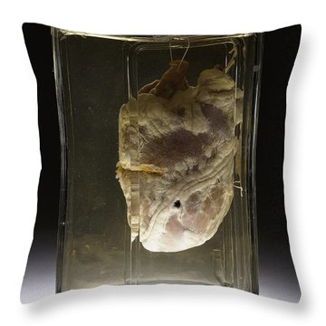 Forensic Evidence, Heart Perforated Throw Pillow by Science Source