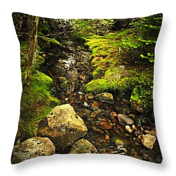 Forest Creek Throw Pillow by Elena Elisseeva