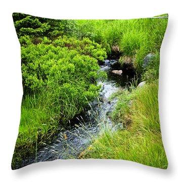 Forest Creek In Newfoundland Throw Pillow by Elena Elisseeva